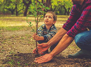 Planting 2,020 Trees – It starts with you
